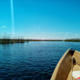 Тур выходного дня на цветение лотосов в дельте Волги с посещением Кремля и набережной Астрахани.(БЕЗ НОЧЕВКИ)